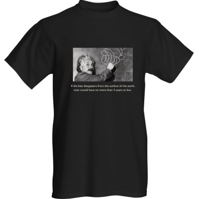 T-shirt - Einstein on Bees - Adult X-Large / black